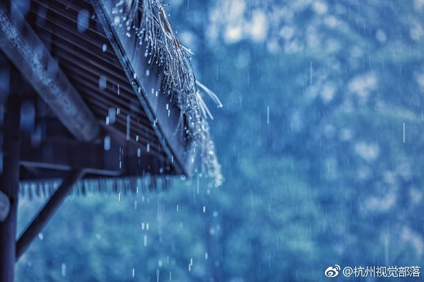 杭州 雨景 江南