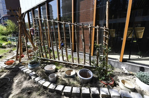 绿花园,西村润,自闭儿童,特殊学校,园艺师