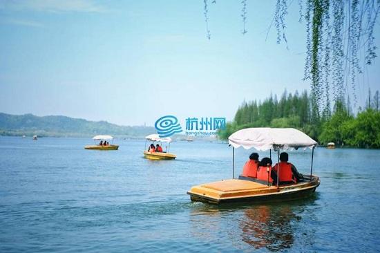 西湖柳,西湖诗人,西湖柳树,西湖杨柳,杨柳意象