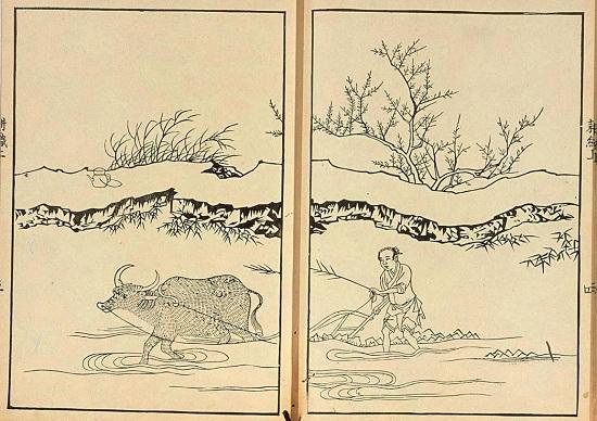 耕织图,耕织图临安,耕织图历史,宋高宗,农业耕作